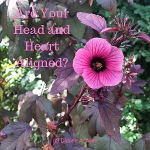 Are Your Head and Heart Aligned?